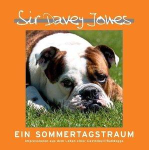 Sir Davey Jones - Ein Sommertagstraum