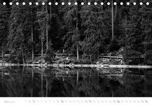 Mystischer Schwarzwald (Tischkalender 2019 DIN A5 quer)
