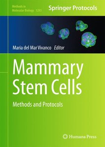 Mammary Stem Cells