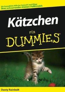 Kätzchen für Dummies