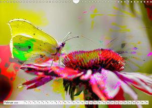 Schmetterlings-ART