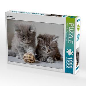 Spieltrieb 1000 Teile Puzzle quer