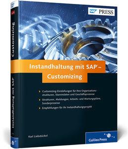 Instandhaltung mit SAP - Customizing