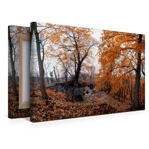 Premium Textil-Leinwand 45 cm x 30 cm quer Ruine Lauenburg
