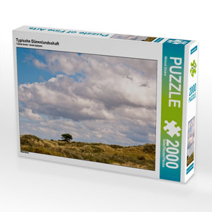 Typische Dünenlandschaft 2000 Teile Puzzle quer