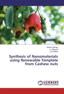 Synthesis of Nanomaterials using Renewable Template from Cashew
