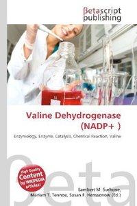 Valine Dehydrogenase (NADP+ )