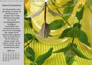 Eine kleine Teekunde - Zwölf Teesorten im Porträt (Wandkalender