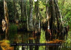 Florida Impressionen