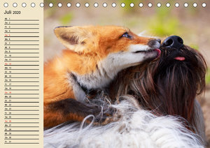 Beste Freunde. Bezaubernde Tierfreundschaften (Tischkalender 202