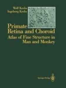 Primate Retina and Choroid