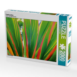 Farbleuchten 2000 Teile Puzzle quer