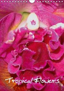 Tropical Flowers (Wall Calendar 2015 DIN A4 Portrait)