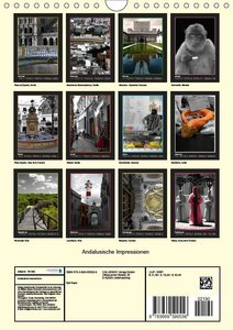 Andalusische Impressionen (Wandkalender 2019 DIN A4 hoch)