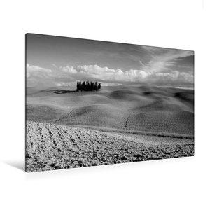 Premium Textil-Leinwand 120 cm x 80 cm quer Baumgruppe bei San Q