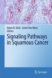 Signaling Pathways in Squamous Cancer