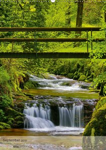 Alles im Fluss - Schwarzwaldwasser
