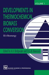 Developments in Thermochemical Biomass Conversion