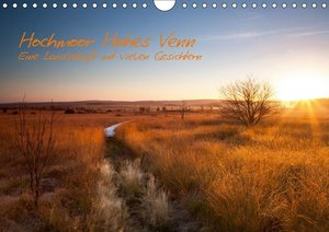 Hochmoor Hohes Venn (Wandkalender 2019 DIN A4 quer)