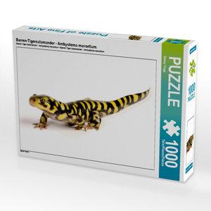 Barren-Tigersalamander - Ambystoma mavortium 1000 Teile Puzzle q