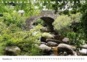 Bezauberndes - Mystisches Devon Dartmoor, Südengland (Tischkalen