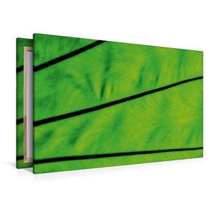 Premium Textil-Leinwand 120 cm x 80 cm quer Strukturen der Natur