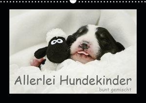 Allerlei Hundekinder (Wandkalender 2019 DIN A3 quer)