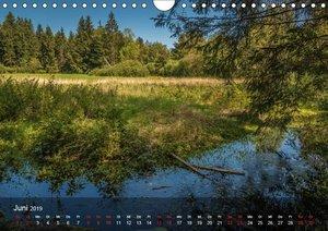 Naturerlebnis Aschau (Wandkalender 2019 DIN A4 quer)