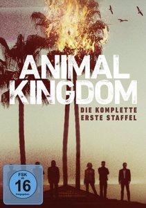 Animal Kingdom. Staffel.1, 1 DVD