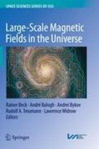 Large-scale Magnetic Fields in the Universe