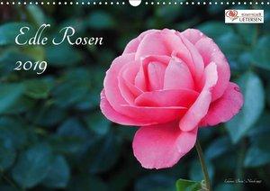 Edle Rosen (Wandkalender 2019 DIN A3 quer)