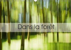 Dans la forêt (Calendrier mural 2015 DIN A3 horizontal)