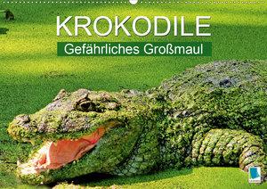 Krokodile: Gefährliches Großmaul