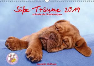 Süße Träume 2019 - schlafende Hundewelpen