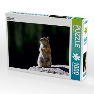 CALVENDO Puzzle Chipmunk 1000 Teile Lege-Größe 64 x 48 cm Foto-P