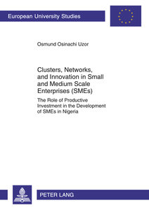 Clusters, Networks, and Innovation in Small and Medium Scale Ent