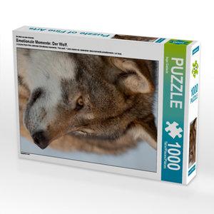 Ein Motiv aus dem Kalender Emotionale Momente: Der Wolf. 1000 Te