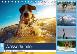 Wasserhunde 2018. Hunde am und im Wasser