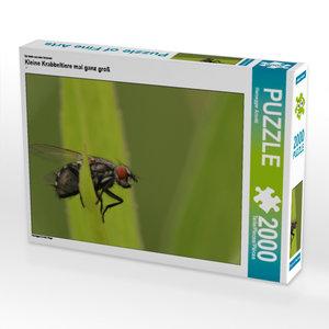 CALVENDO Puzzle Kleine Krabbeltiere mal ganz groß 2000 Teile Leg