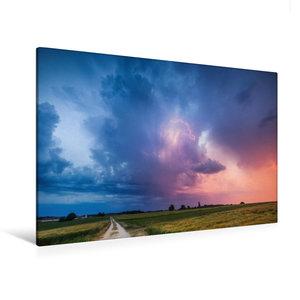 Premium Textil-Leinwand 120 cm x 80 cm quer Einzelzelle im Sonne