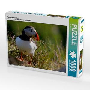Papageientaucher 1000 Teile Puzzle quer