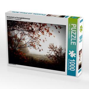 Herbstlicht im Pennigbüttelermoor 1000 Teile Puzzle quer