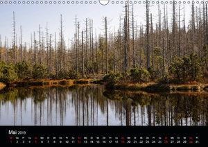 Zauberhafter Bayerischer Wald (Wandkalender 2019 DIN A3 quer)