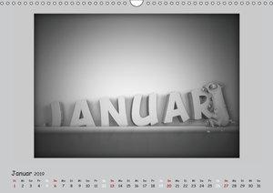 Kleine Kalender-Kreaturen (Wandkalender 2019 DIN A3 quer)