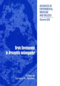Brain Development in Drosophila melanogaster