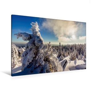 Premium Textil-Leinwand 120 cm x 80 cm quer Eisige Baumskulpture