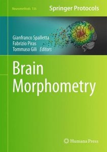 Brain Morphometry