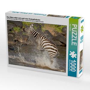 Das Zebra rettet sich nach einer Krokodilattacke 1000 Teile Puzz