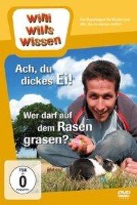 Willi wills wissen. Ach, du dickes Ei! / Wer darf auf dem Rasen
