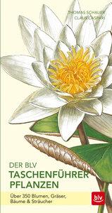 Der BLV Taschenführer Pflanzen